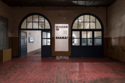 Where is Diana_Espacios_001