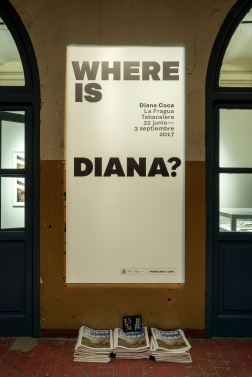 Where is Diana_Espacios_022