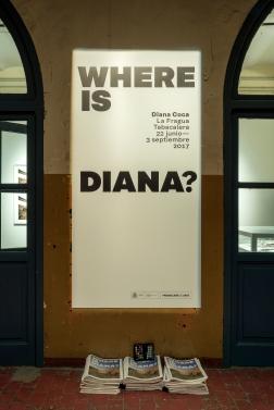 Where is Diana_Espacios_022