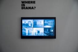 Where is Diana_Espacios_026